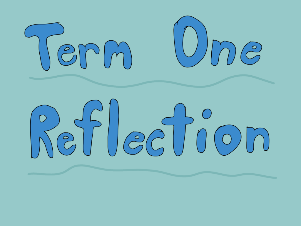 Term 1 Reflection!🤔