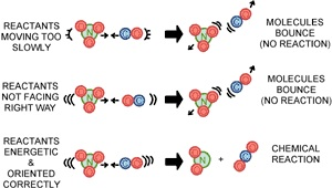 Chem 12 Unit 1 Reaction Kinetics | Mrs.Toombs' Blog Site