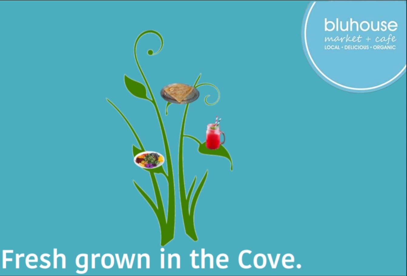 Fresh grown in the cove bluhouse ad
