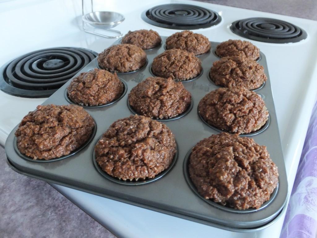 Vegan Bran Muffins (10)
