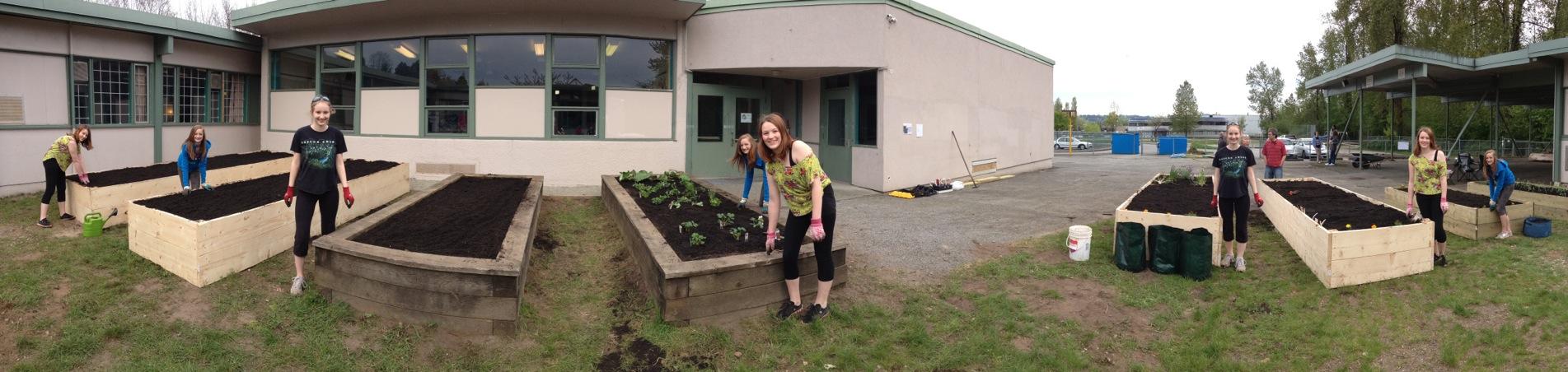 iHub Garden Build