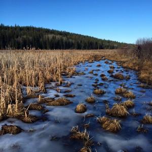 Frozen pond in 108 mile