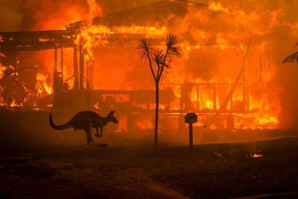 Apocalypse – l'Australie est englouti par les flammes