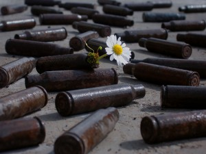 Flowers and Bullets