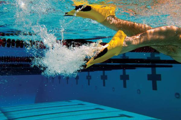 Image result for flutter kicks in pool