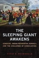 sleeping giant book