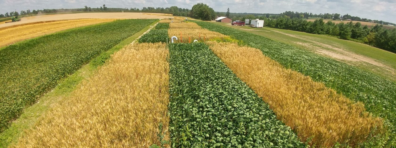 Lysimeter Site in Wheat and Soybean