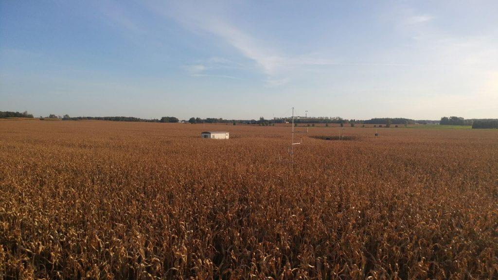 Wind Speed Monitoring in Corn Field