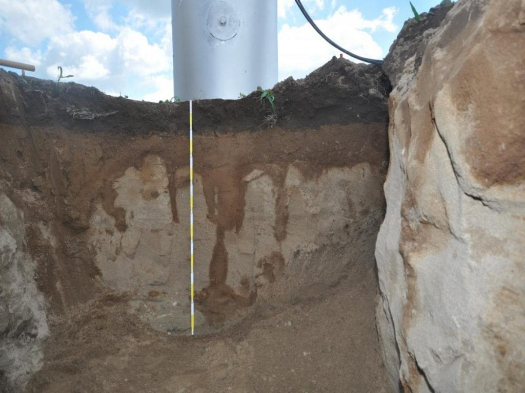 Soil profile from the lysimeter extraction process