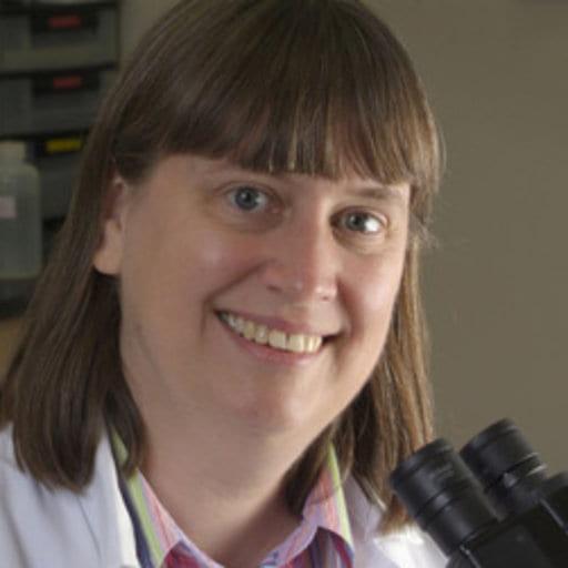 Headshot of Brenda Coomber