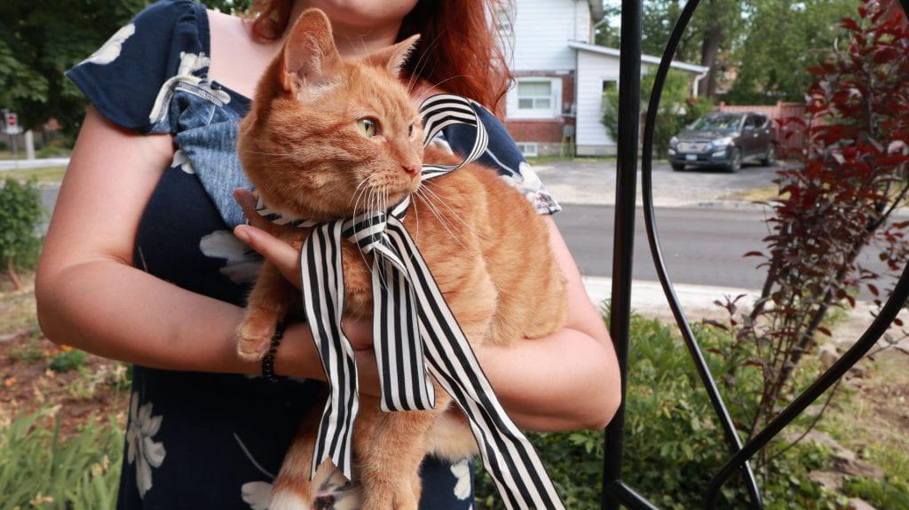 Image of Sophie Neumann holding an orange cat.