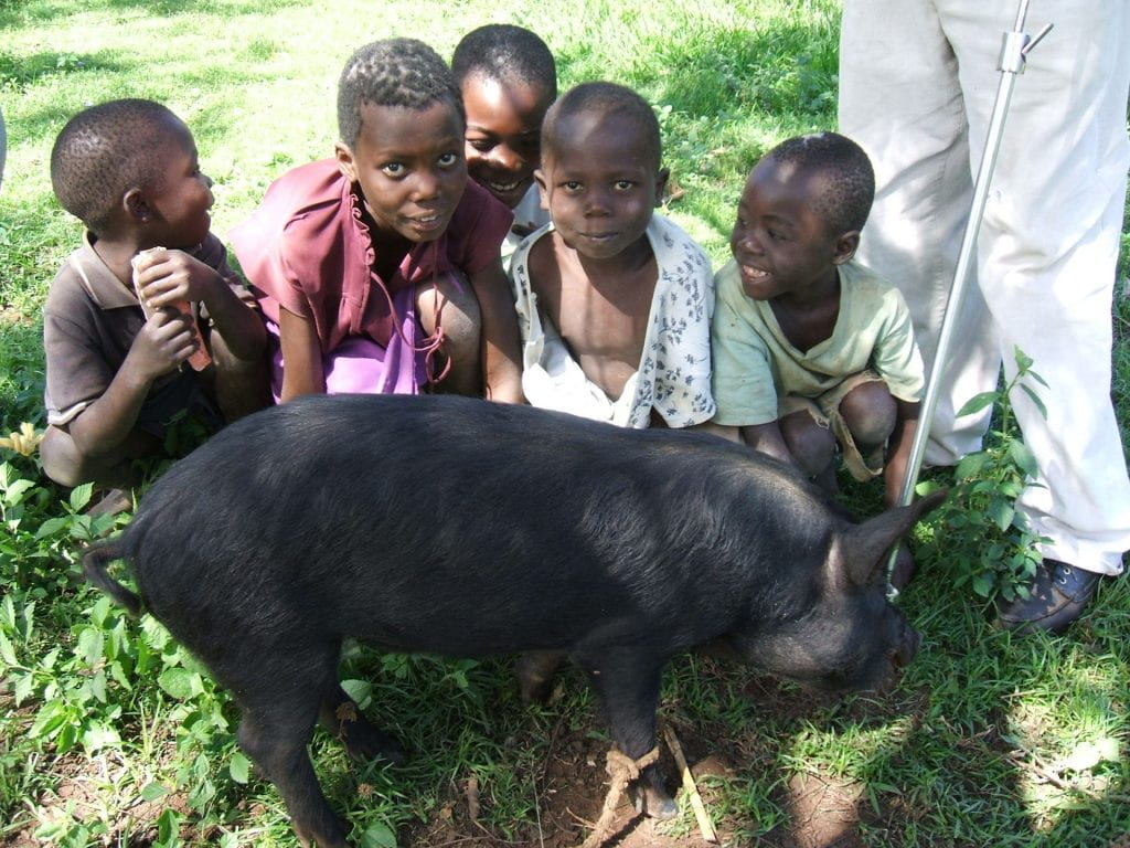 Image of five young children in Kenya sitting on the grass with a pig in front of them.