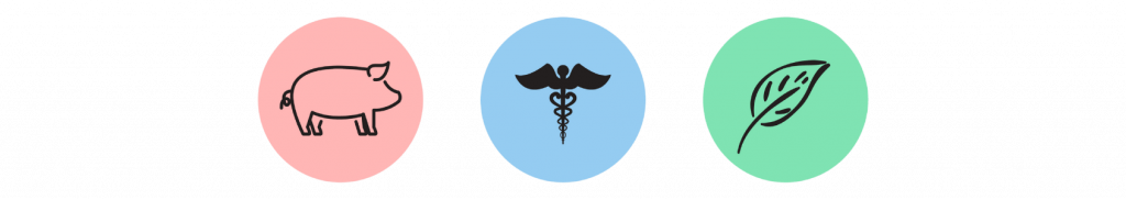 One Health Student Committee logo. On the left is a pink circle with the outline of a pig, in the middle blue circle is a medical symbol and on the right is a green circle with the outline of a leaf.