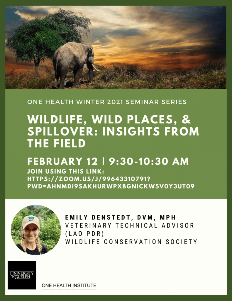 "Poster text: ""Winter 2021 One Health Institute Seminar Series. WILDLIFE, WILD PLACES, & SPILLOVER: INSIGHTS FROM THE FIELD. February 12th 9:30-10:30 am. Emily Denstedt, DVM, MPH, Veterinary Technical Advisor (Lao PDR) Wildlife Conservation Society."" Background image of elephant in nature and headshot of Emily Denstedt."
