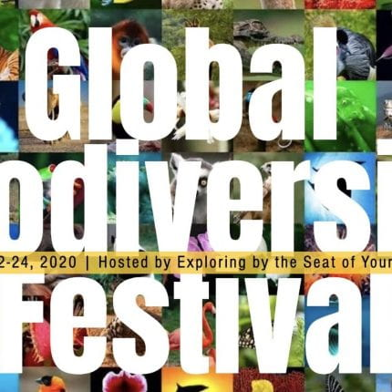 GlobalBioFest celebrates May 22nd: The International Day for Biological Diversity