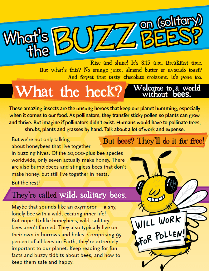 Image shows a poster with bright colours and different fonts, with text related to bees.