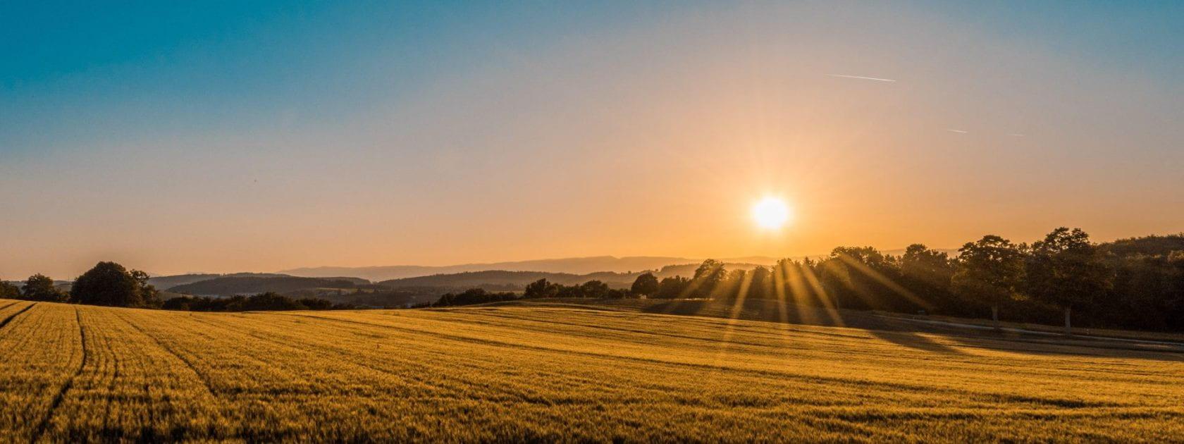 Image shows a farm landscape and a sunset