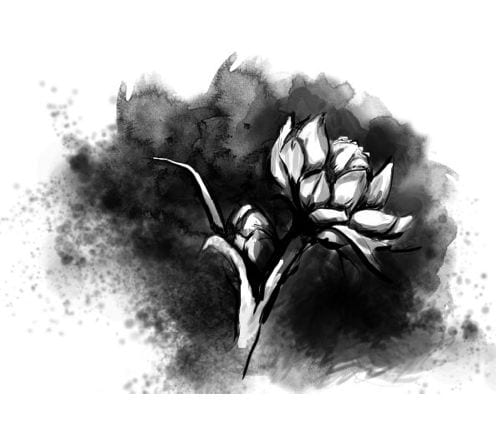 A black and white watercolor painting of a flower