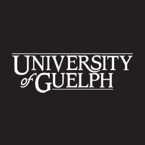 This is the standard university of guelph cornerstone logo. A black square with the words university of guelph in a fancy font.