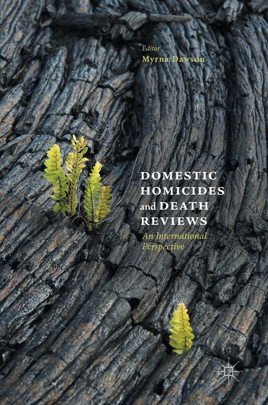 Domestic Homicides and Death Reviews Book Cover.