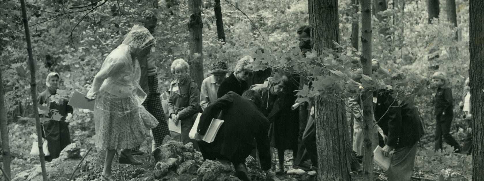 A group of people gather and look at the stump of a tree in the woods. One woman on the left is pulling up her skirt as she walks nearer to the group.
