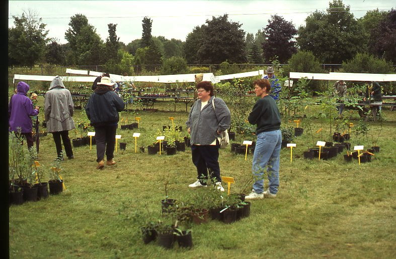 A group of people stand in a green field surrounded by potted plants. Signs hang above the potted plants providing information on the plants and their prices