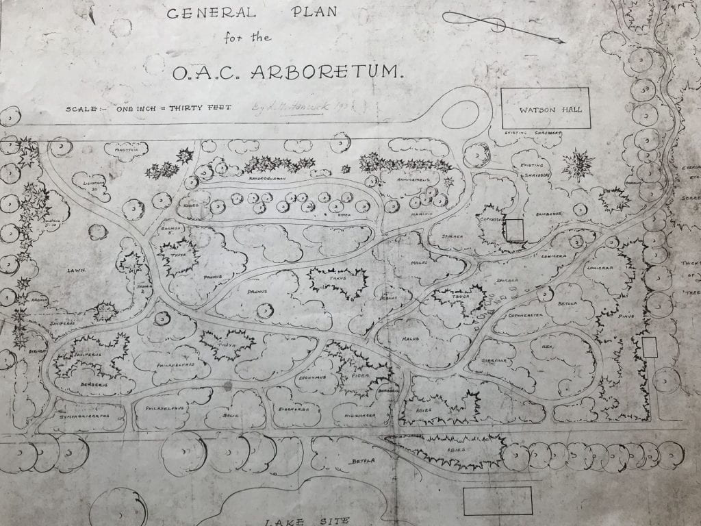 """1938 Map of proposed Arboretum says """"OAC Arboretum"""" across the top. Various locations of plant collections are mapped out near a dead-end road leading to a structure labelled """"Watson Hall""""."""