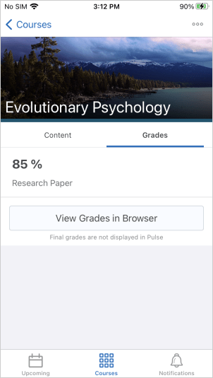 The new Grades tab for a course in Brightspace Pulse